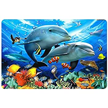 Amazon Com Dolphins Doormat Entrance Mat Floor Mat Rug