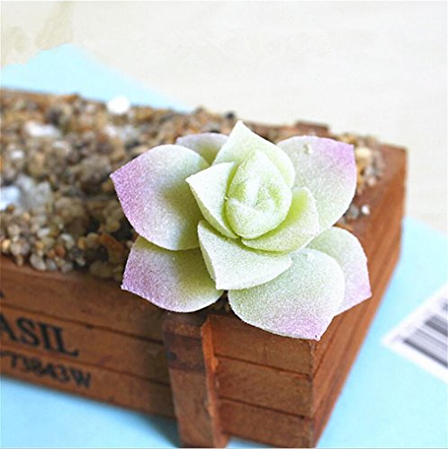 Windse Mini Succulent Plants Plastic Artificial Fall Leaves Flores DIY Suculentas Artificiais Home Office Table Decoration Fake Flowers P31