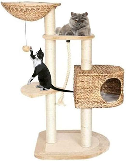 Los árboles gatos Cat Scratch Mensajes Gato que sube la torre del gato del gato del