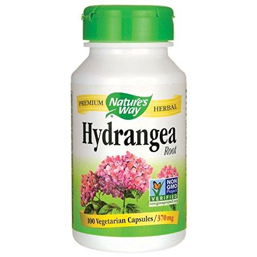 Nature's Way Hydrangea Root, 370 Milligrams, 100 Vegetarian Capsules. Pack of (370 Mg 100 Capsules)