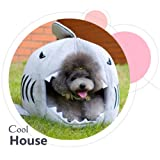 ColorfulPets Cute Shark House Pet Bed for Small Dogs and Cats (Medium)