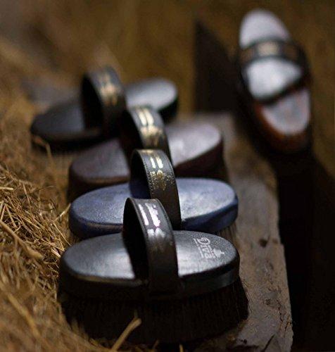 Eqclusive Black Short Hair Dark Bay Horse Brush Set