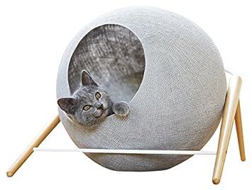 griffoir chat paris