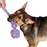 Animals Favorite Jute Ball Rope Knots, Cotton Jute Pull Tug Dog Toy (Purple Rope)