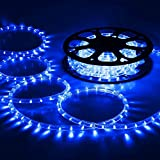 DELight 12m(40ft) Blue Bright LED Rope Light Strip Light Waterproof Outdoor Indoor Home Party Decora