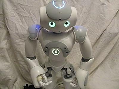 Nao Humanoid Robot V3.3 Evolution Sophisticated Learning Robot