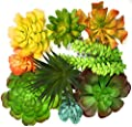 Trunnco 9 Designer Quality Large Faux Succulents Life-Like for Artificial Succulent Plants Arrangement