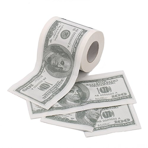 HDE Novelty Dollar Currency Toilet
