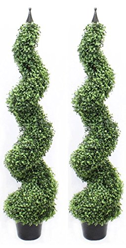 With Decorative Finial - Pre Potted Home Decor (4 Foot Heart Leaf Twin Pack) (Outdoor Spiral Topiary)