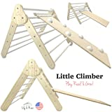Little Climber - Play, Read, & Grow | Foldable for Flat...