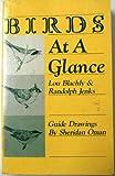 Birds at a Glance, Lou Blachly and Randolph Jenks, 0442212852