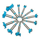 Senzeal 11pcs Forstner Carbide Steel Drill Set Hole Saw Woodworking Wood Cutter Drill Bit for Wood Plastic Plywood 15-50mm
