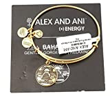 Alex and Ani The Bahamas Gold Charm Bangle Bracelet
