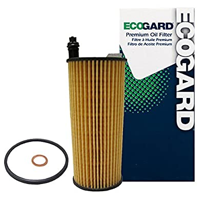 ECOGARD X10250 Oil Filter: Automotive