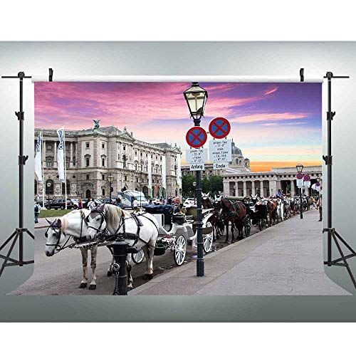 VVM 7x5ft Sightseeing Carriage Backdrop Urban Street View Global Travel Photo Shoot Props Landmark Building Photography Background MVV009