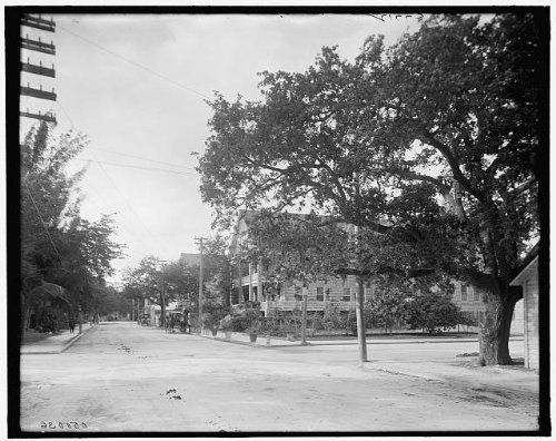 Infinite Photographs Photo: Avenue C,Fort Dallas Hotel,Streets,Buildings,Resorts,Roads,Miami,Florida,FL,1900 ()