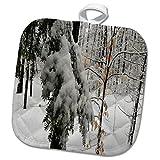 3dRose TDSwhite – Winter Seasonal Nature Photos - Winter Scenic Snowy Woods - 8x8 Potholder (phl_284960_1)