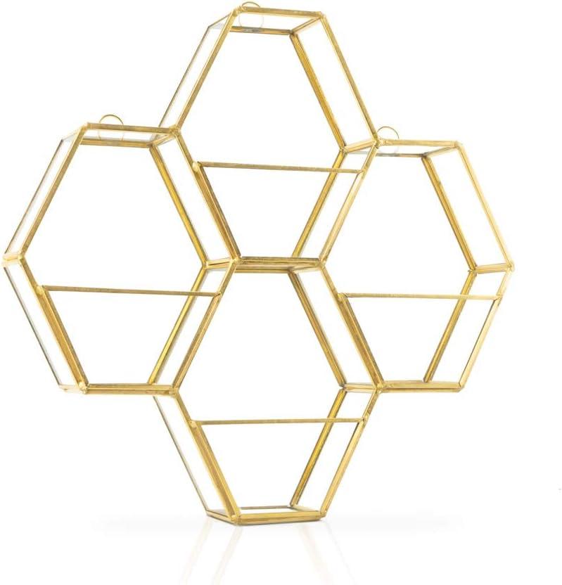 Estanteria Pared Metal Vintage Dorada Hexagonal – Estante de Decoracion Flotante de Diseño Retro para Paredes Sala Estar Pasillo Soporte Organizador Metalico Latón y Vidrio 26*26*5cm.