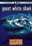 Inside Nature's Giants: Great White Shark [DVD] [Region 1] [US Import] [NTSC]