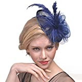 Hilary Ella Cocktail Feather Mesh Net Sinamay Fascinator Hat