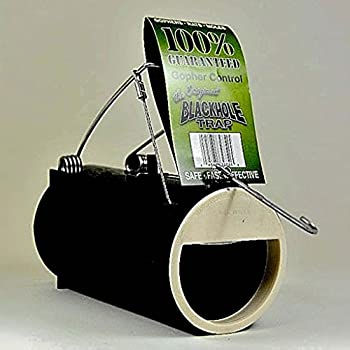 Black Hole Reusable Spring Loaded Gopher Trap for Outdoor Pest Control