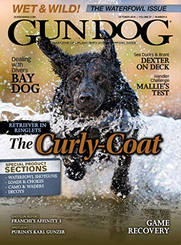Magazines : Gun Dog