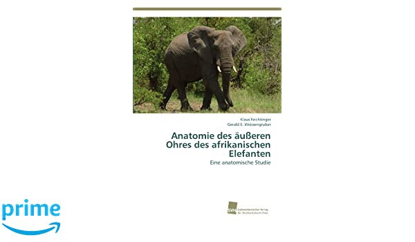 Anatomie des äußeren Ohres des afrikanischen Elefanten: Eine ...