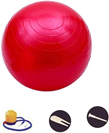 SENDILI Pelota de Yoga - Balon Pelota de Pilates Fit Ball Fitness ...
