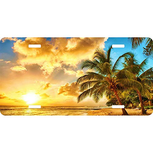 Custom License Plates Golden Sunset Sea Water Sky Beach Tropical Palms Personalized Aluminum for US Canada Cars, Metal Auto Tag Sign for Women/Men, 12 x 6 Inch