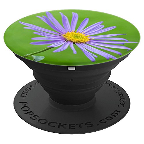 Purple Aster Flower, Daisy, Flora, Astereae. - PopSockets Grip and Stand for Phones and (Aster Daisy)