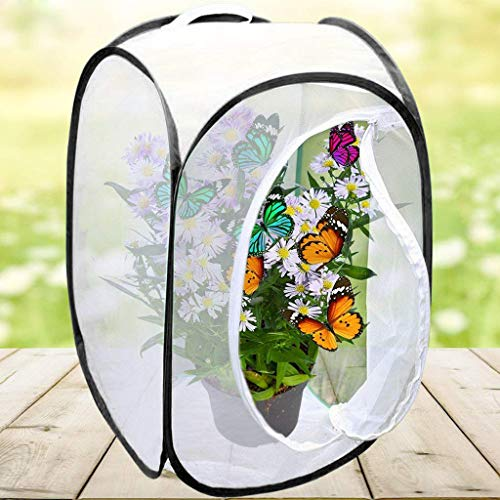 ( AIUSD Clearance , Portable Collapsible Insect and Butterfly Habitat cage Terrarium Open Butterfly Habitat Cage Housing Enclosure 40X40X60CM)