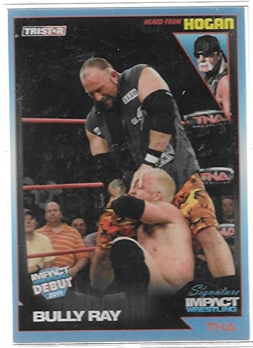 Bully Ray 2011 Tristar TNA Signature Impact Wrestling Debut Trading Card #83 - Stored in a Protective Plastic Display Case!! -