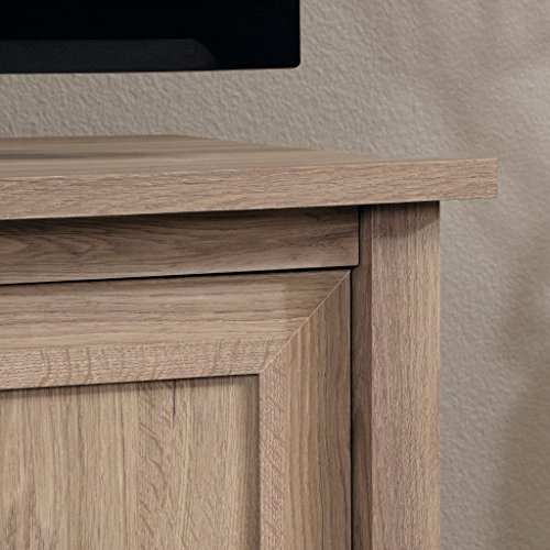 Sauder 417772 County Line Panel TV Stand, Salt Oak by Sauder (Image #2)