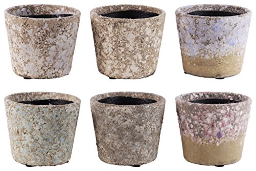 Urban Trends 55703-AST Terracotta Round Pot with Tapered Bottom Assortment of Six Exposed Aggregate Finish, Pastel, 6 Piece