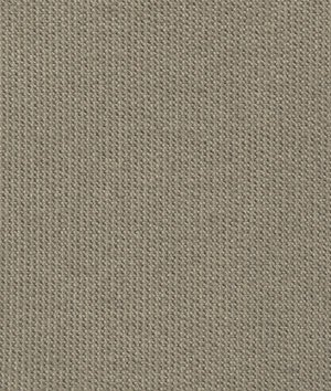 Sunbrella Canvas Taupe Fabric - by the ()