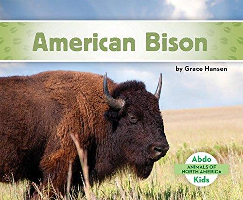 North American Bison Animals (American Bison (Animals of North America))