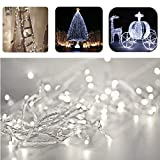 Fairy Twinkle String Lights, REDGO 33 Feet 10M 100 LEDs with Multi Flash Modes Controller & Tail Plug Connectable for Chirstmas Tree, Birthday Party, Garden, Patio and Kid's Bedroom Club Bar, White