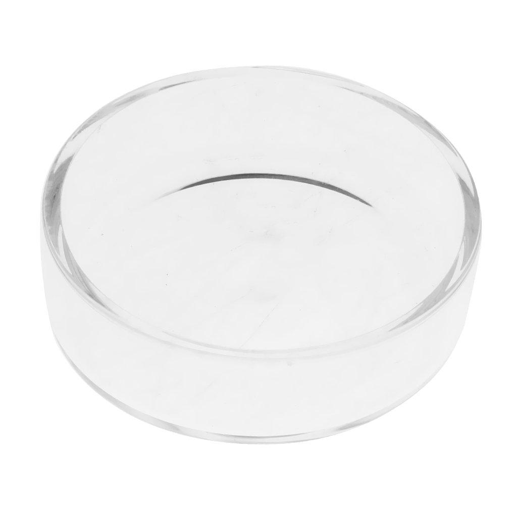 Sharplace Plato de Alimentación de Camarones Bandeja Accesorios de Acuario - Cuadrado