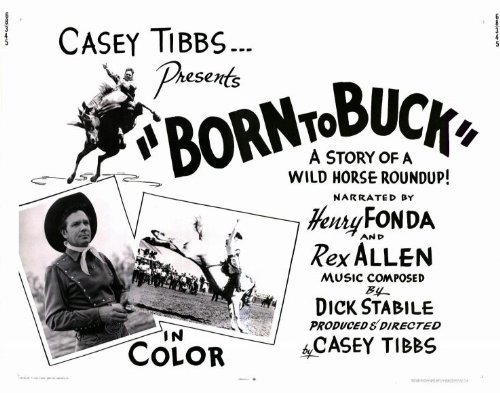 Born to Buck POSTER Movie (22 x 28 Inches - 56cm x 72cm) (1968) (Half Sheet Style (22 Half Sheet Movie Poster)