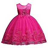 Big Girl Dresses Formal Wedding Bridesmaid 8 9 Years Girl Dresses Princess Pageant Elegant Tulle Gowns Pageant Dresses Girls Rose Sequin Dress Sleeveless Summer Playwear Casual Petal (Rose 140)