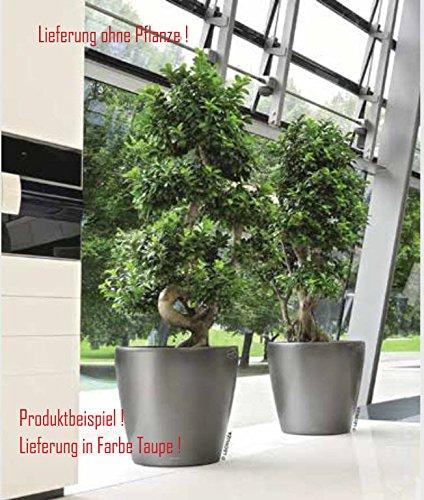Blumenübertopf Classico Premium, sonnen-und regenbeständig für Innen und Außen, Farbe Taupe, Ø ca.60cm Höhe ca.56cm
