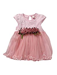 Baby-Girls Chiffon Lace Floral Tutu Dress Party Wedding One-piece Dress Clothes