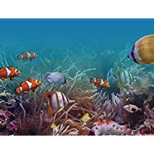 J.P. London PMUR2003 Peel and Stick Removable Wall Decal Sticker Mural, Finding Fishies Nemo Underwater Ocean, 4 X 3-Feet