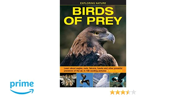 Exploring Nature: Birds of Prey: Learn About Eagles, Owls, Falcons ...