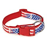 """Casual Canine Neoprene Dog Collar, Fits Necks 18"""" to 26"""", Red Flag"""