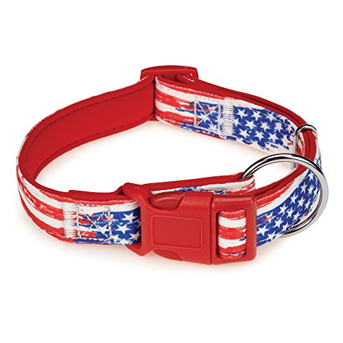"Casual Canine Neoprene Dog Collar, Fits Necks 10"" to 16"", Red Flag"