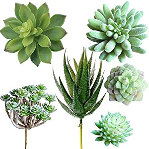 Supla Pack of 6 Assorted Artificial Echeveria Succulent Picks Textured Faux Succulent Pick Agave Cactus in Different Green for Fake Succulent Bouquet Floral Arrangement 90