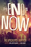 img - for The End is Now (The Apocalypse Triptych Book 2) (Volume 2) book / textbook / text book