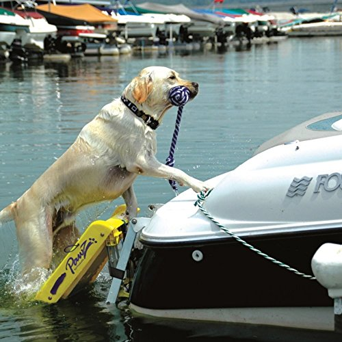 Boat Ladder For Dogs