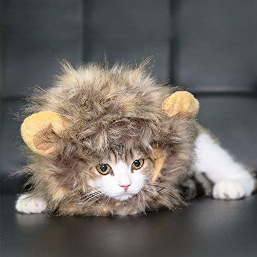 CatYou Halloween Photo Parties Pet Costume Lion Mane Wig Hat for Cats Dogs Pet Dress up and Costume (Dress Up Dogs)